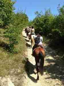 trekking cavallo1